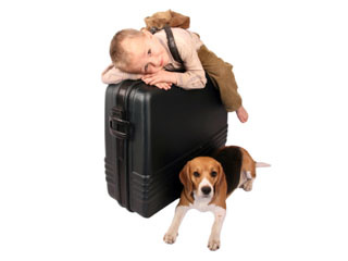 AQIS accredited veterinarian certified vet travel air flight overseas international countries